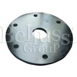 Float's flange for FB/F steam generator